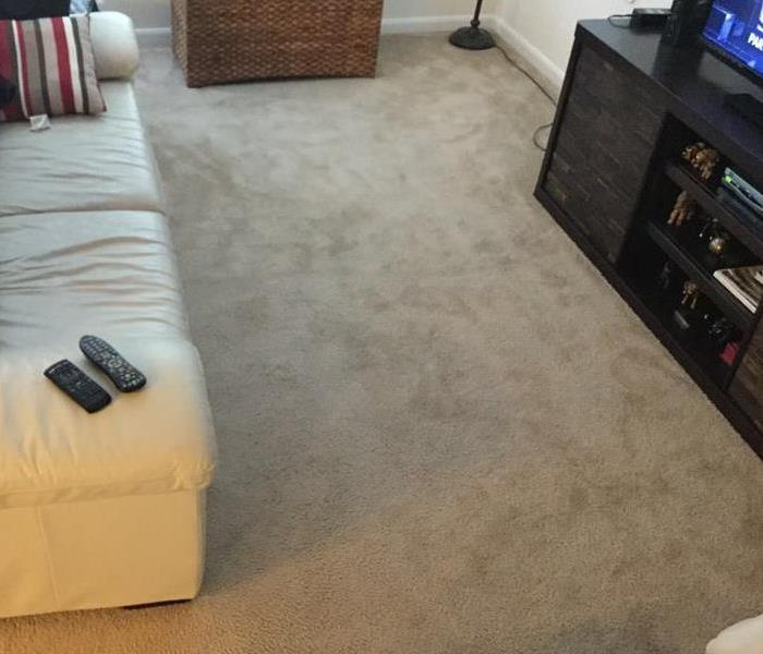 Carpet Cleaning Missiouri City, Tx Before