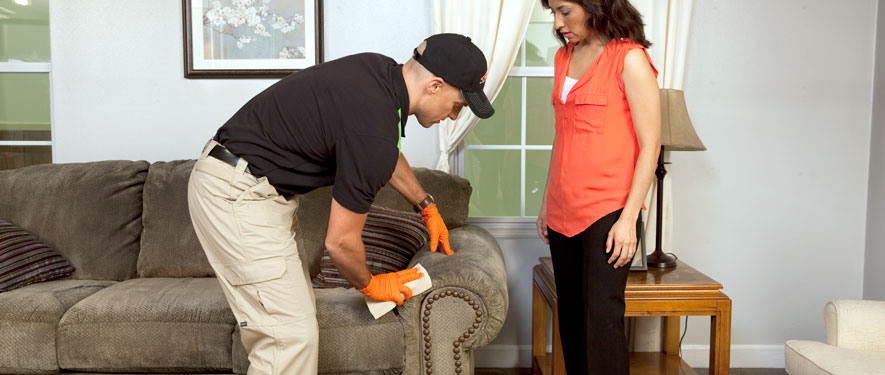 Missouri City, TX carpet upholstery cleaning